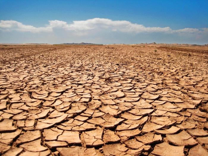 Resultado de imagem para dry land